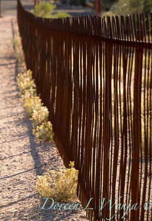 Ocotillo metal fence_5700