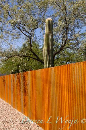 Corrugated rusty metal fencing_5775