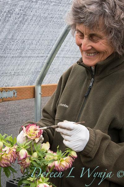 Marietta doing pollination_1283
