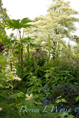 Northwest Garden Nursery__060
