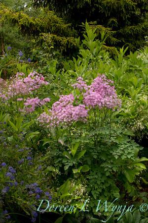 Northwest Garden Nursery__005