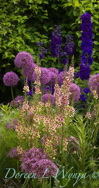 Northwest Garden Nursery__077