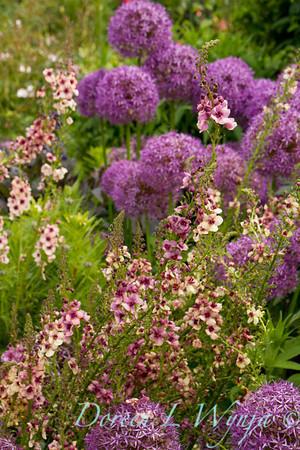 Northwest Garden Nursery__073
