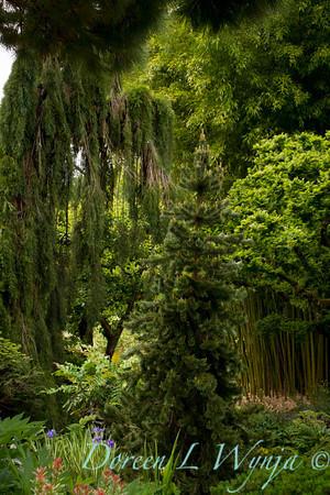Northwest Garden Nursery__055