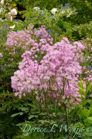 Northwest Garden Nursery__006