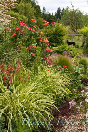 Northwest Garden Nursery__079