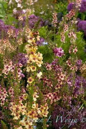 Northwest Garden Nursery__075