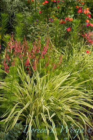 Northwest Garden Nursery__080