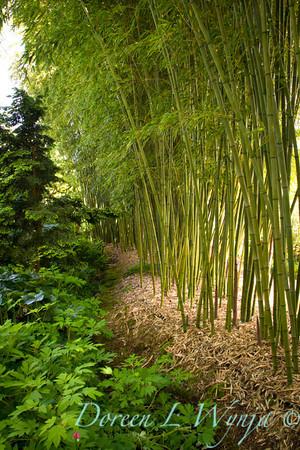 Northwest Garden Nursery__032