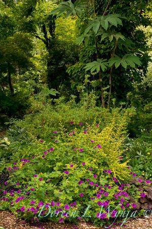 Northwest Garden Nursery__025