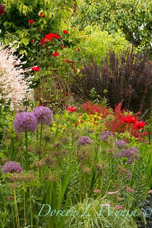 Northwest Garden Nursery__062