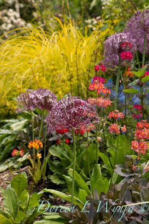 Northwest Garden Nursery__024