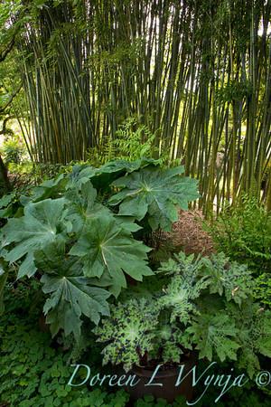 Northwest Garden Nursery__035