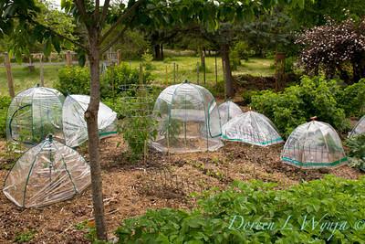 Northwest Garden Nursery__083