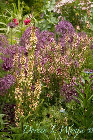 Northwest Garden Nursery__074