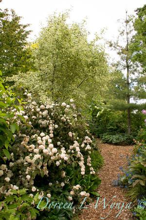 Northwest Garden Nursery__010