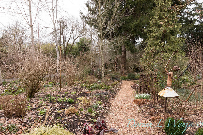 Winter landscape creekside path_3756