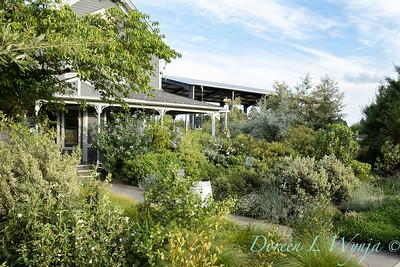 Argyle Winery landscape - Sean Hogan designer_2413