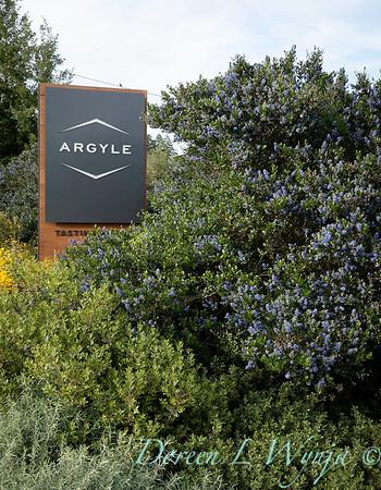 Argyle Winery landscape - Sean Hogan designer_2400
