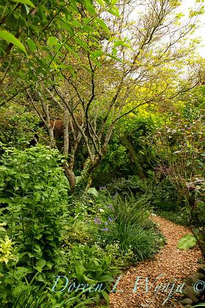 Garden Path_7466
