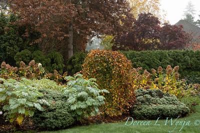 Dietrick fall garden_2044