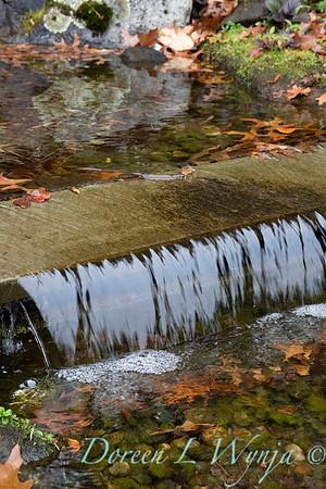 Dietrick fall garden_2041