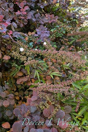 Dietrick fall garden_2004