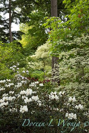 Spring time_1631