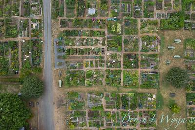 Aerial view Fulton Community Garden_1845