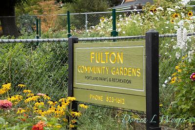 Fulton Community Garden_1800