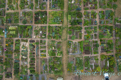 Aerial view Fulton Community Garden_1844