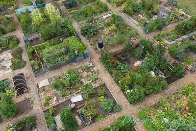 Aerial view Fulton Community Garden_1850