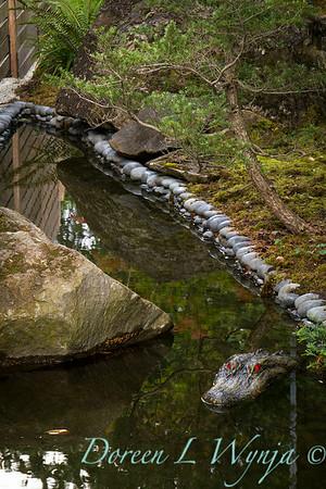 Leslie Campbell landscape designer_1012
