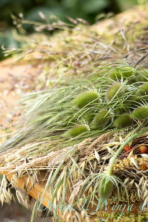 Leslie - herb bundles_2029
