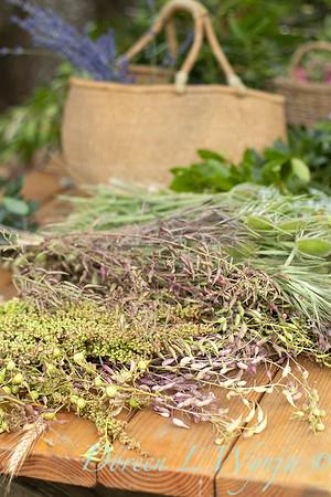 Leslie - herb bundles_2028