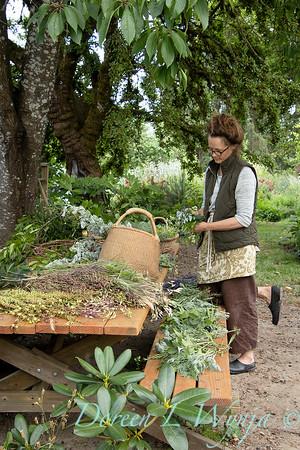 Leslie - herb bundles_2037