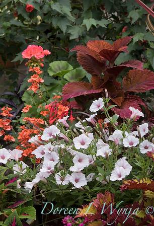 Ernst Garden of colors_2006