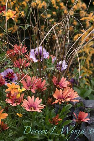 Ernst Garden of colors_2021