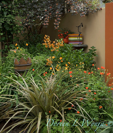 Ernst Garden of colors_2027