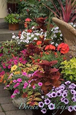 Ernst Garden of colors_2003