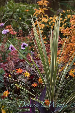 Ernst Garden of colors_2024