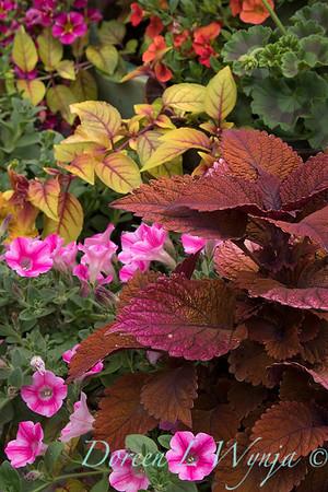 Ernst Garden of colors_2004