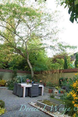 Outdoor dining_2091