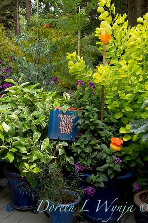 Darcy Garden_063