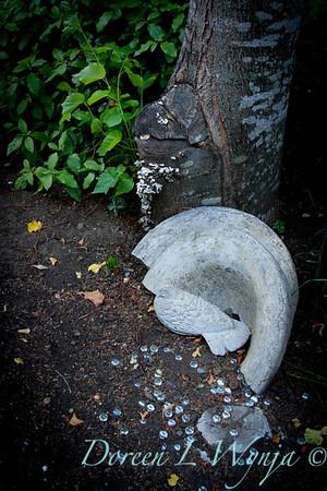 Darcy Garden_046