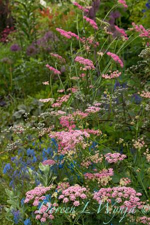 Northwest Garden Nursery__066