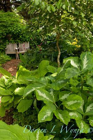 Northwest Garden Nursery__026