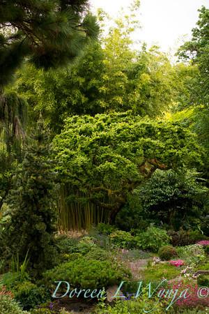 Northwest Garden Nursery__054