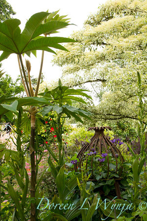 Northwest Garden Nursery__061