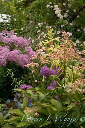 Northwest Garden Nursery__008